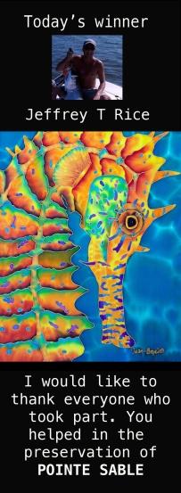 seahorse  silk painting
