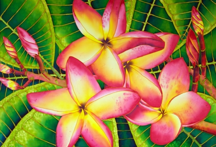 JEAN-BAPTISTE : World's Best Silk Painting Artist : FRANGIPANI