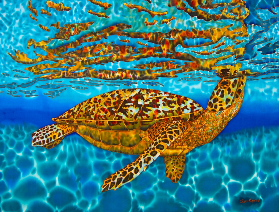 Fine Art America Sea Turtle Prints: JEAN-BAPTISTE