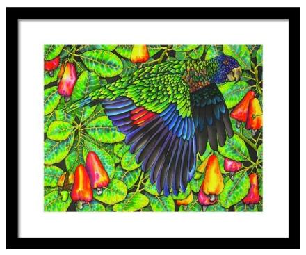FINE ART AMERICA | Daniel Jean-Baptiste Prints | St. Lucia Parrot |